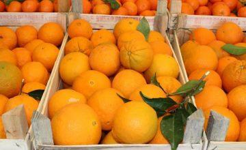 Imbrogli cinesi e arance di Sicilia