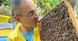 Andrea, che si cura col veleno delle api